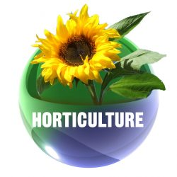 Professional Horticulture and Landscaping